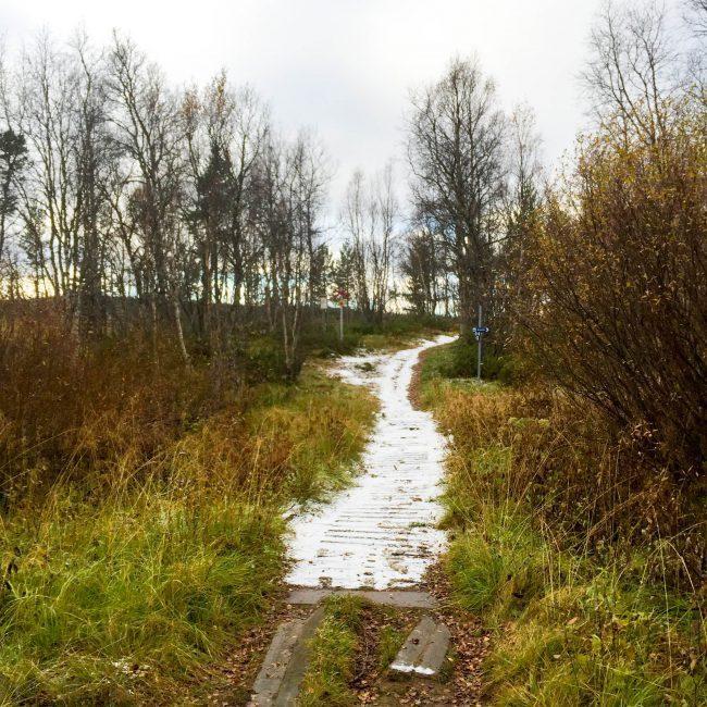 Vålådalen - Åre - Sverige