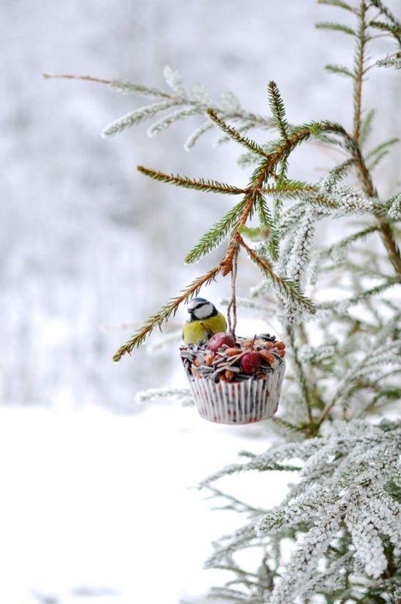 Dekorativ og hjemmelaget mat til småfuglene