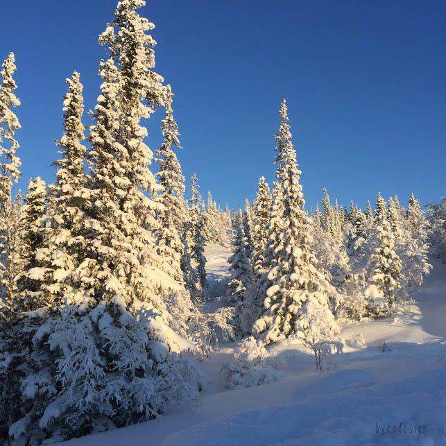 Åre - Copperhill - Winterwonderland