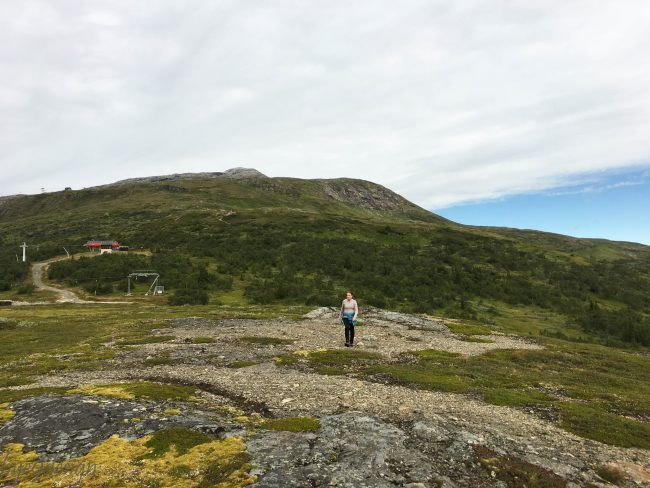 Fjelltur - skogstur i Åre - bye9design