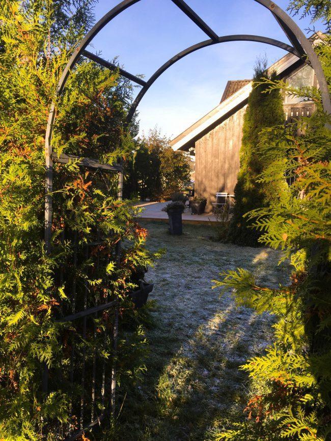 stemningsrapport fra hagen i oktober - bye9design
